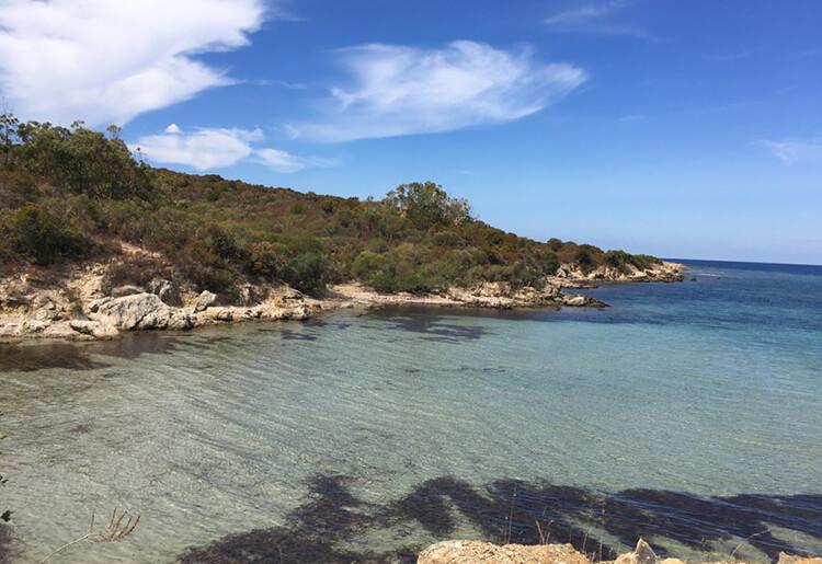 Corsica viaggi 4x4